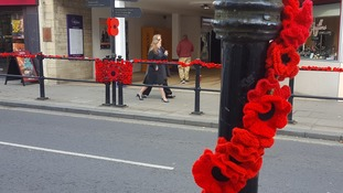 Warminster has been 'yarn-bombed' with poppies this year