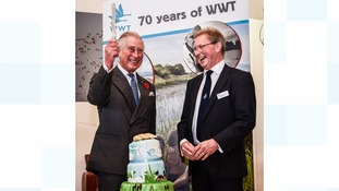 Prince Charles visits Slimbridge for its 70th anniversary