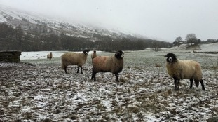 Weather: What will winter bring?