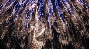 Firework Gallery