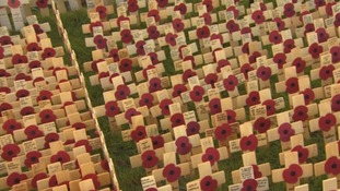 Lest we forget: field of remembrance unveiled in Royal Wootton Bassett