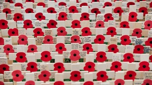Remembrance crosses.