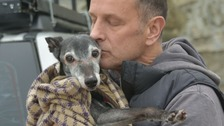 Walnut the whippet went for an emotional final walk with his owner Mark
