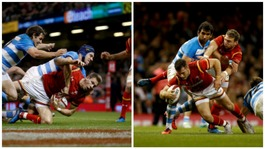 Wales beat Argentina 24-20 in autumn series