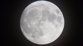 Skywatchers to get closest view of supermoon since 1948