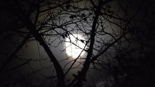 Poor visibility for November Supermoon