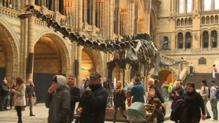 The huge dinosaur skeleton is world famous.