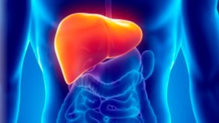 How to keep your liver healthy and avoid epidemic.