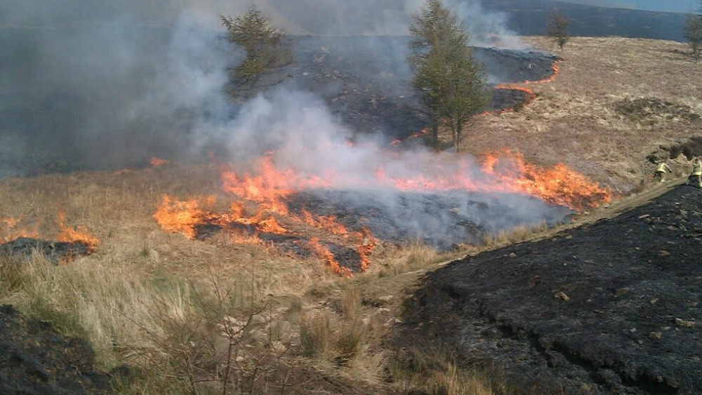 new project to help tackle grass fires