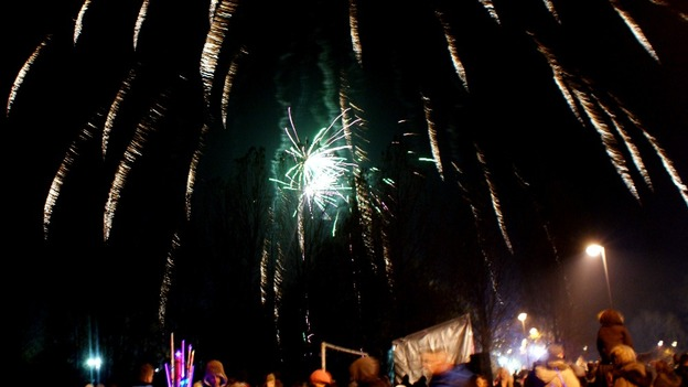 Fireworks display at Walker Park in Newcastle