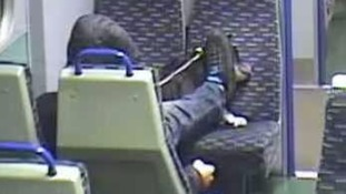 'Shocking' CCTV shows dog cruelly beaten on Essex train