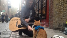 James with his cat Bob.