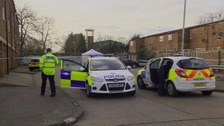 Mr Meshi's body was found in Basildon's Pincey Mead