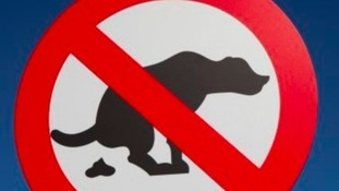 Dog poo on child's gum guard prompts appeal
