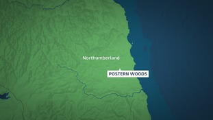 A woman was bitten by a dog in Postern Woods, Morpeth