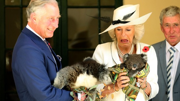 Prince Charles joked about the koalas' reputation for having weak bladders