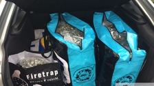 Police find £20,000 worth of cannabis in boot of car in Kent