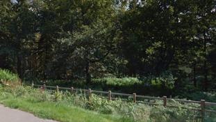 Maricar Benedicto was lured into Harlestone woods
