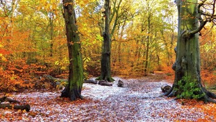 A settled start to winter