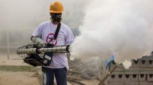Workers spray pesticide in Rio de Janeiro to try and prevent any further infection.