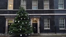 Devon Christmas trees bound for Downing Street