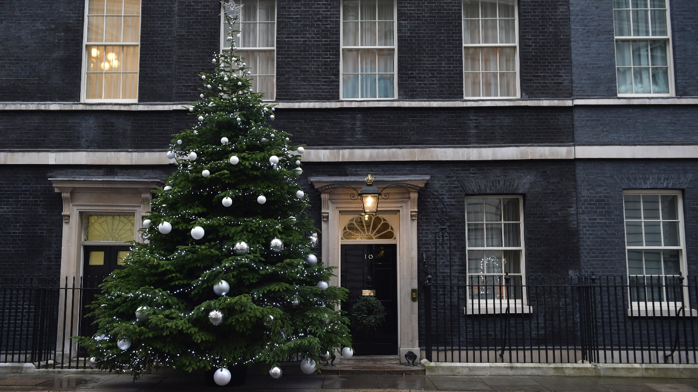 Devon Christmas Trees Bound For Downing Street West