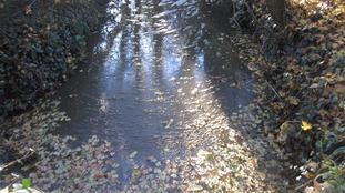 Plumpton Mill Stream