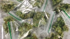 Police swoop on cannabis street dealers in Haringey.