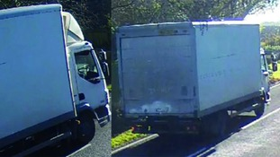 Police are looking for the driver of this lorry after the hit and run crash