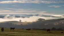 Misty morning over High Bradfield RON MARSHALL