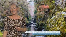 Wales Weather: Murky, but very mild!