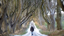 The Dark Hedges road has been named as one of the world's most beautiful.