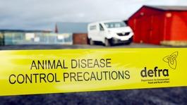 Bird flu precaution warning to poultry farmers
