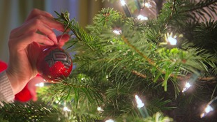 Ten things you might not know about the humble Christmas tree