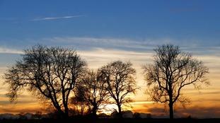 Anglia Weather: Cloudy and mild overnight. Rain tomorrow