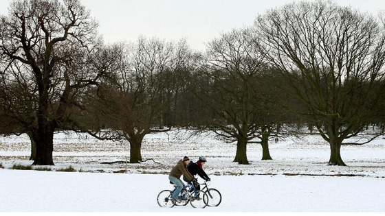 Cyclists ride through snow in Richmond Park.