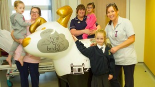 Young patients and staff on the children's unit welcome Tyne Tail Jack to The Northumbria hospital.
