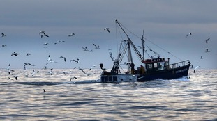 UK fishing industry 'will need access to European markets to thrive after Brexit'