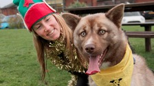 Carer Suzie Douglas is pictured with Tyson