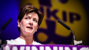 Former Ukip leader Diane James.
