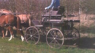 A Hartland pony carriage was stolen.