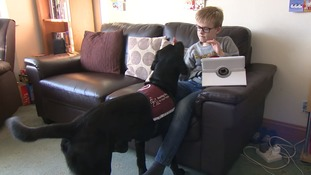Boy's best friend: 10-year-old's life is transformed by getting a hearing dog for Christmas