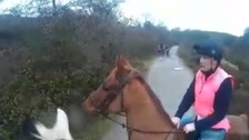 Horse spooked