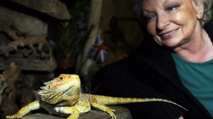 Exotic animals face uncertain future after a rescue centre is served with an eviction notice
