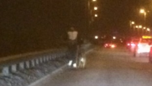 Police stunned to find man walking his dog on motorway