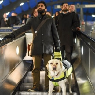 Kika is one of only five percent of guide dogs trained to take their owners on escalators.