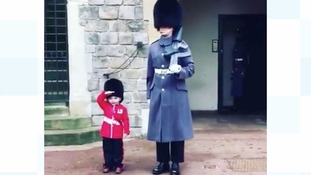 VIDEO: Youngster gets impromptu snap with Windsor guardsman