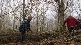 Wood theft jeopardises community project