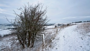 Some parts of the Anglia region could see snow on Thursday as temperatures plunge.