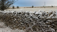 This stone wall gets a temporary white wash.